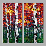 2 Panels Acrylic Painting Textured Design Home Decor Wall Art Handmade For Living Room