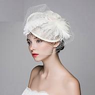 Women's Black Birdcage Veils Organza Headpiece-Wedding Tulle Net Fascinators with Rose Lace Feather Hat