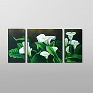 Ručno oslikana Sažetak / Mrtva priroda / Cvjetni / Botanički ulja na platnu,Moderna / Klasika / Rustikalni / Europska Style Tri plohe
