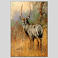 Oil Painting Deer Style  Canvas Material with Stretched Frame Ready To Hang SIZE60*90CM.