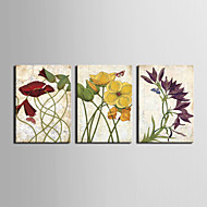 étiré art toile danse fleur floral ensemble de 3