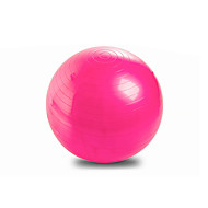 65cm Fitnessboll PVC Rosa Blå Purpur Unisex Other