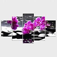 Gerdirilmiş Tuval Resmi Çiçek/Botanik TARZ Modern,Beş Panelli Kanvas Herhangi Şekli baskı Sanatı Duvar Dekor For Ev dekorasyonu