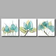 Pingoitetut kanvasprintit Abstrakti Kukkakuvio/Kasvitiede Moderni,3 paneeli Kanvas Vaakasuora Tulosta Art Wall Decor For Kodinsisustus