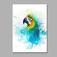 Kézzel festett Állat Függőleges,Modern Egy elem Vászon Hang festett olajfestmény For lakberendezési