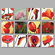 Ručně malované Květinový/Botanický motiv Čtvercový,Moderní Více než pět panelů Plátno Hang-malované olejomalba For Home dekorace