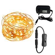 הוביל אורות מחרוזת 10 מ '100 לדים waterproof אורות דקורטיביים למסיבות פטיו השינה 12v 3a מחבר חשמל מחבר מתאם inline on / off switch