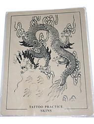la peau pratiques de tatouage de dragon avec des contours