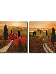 Hand-Painted Landscape Two Panels Canvas Oil Painting For Home Decoration