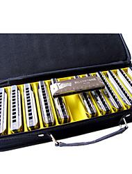 huang - (103.oY) prata luxo hamonica 12 teclas pack/10 holes/20 tons