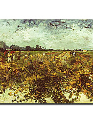 met de hand geschilderd beroemde olieverf met gestrekte frame van gogh