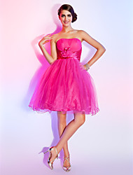 Homecoming / Sweet 16 Dress - Short Plus Size / Petite A-line / Ball Gown Strapless Short / Mini Tulle withFlower(s) / Side Draping /