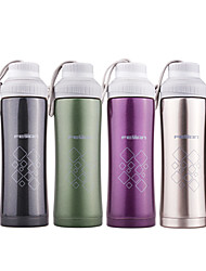 400ML Sports Vacuum Bottle/Vacuum Flask (White/Black/Green/Purple)