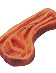 Squeaking Grilled Fillet Steak Style Rubber Toy for Dogs