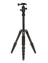 DIDEA Camera Tripod H051 per fotocamera digitale, SLR e DSLR