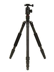 DIDEA Camera Tripod K214 for Digital Camera, SLR&DSLR