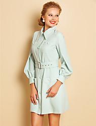 TS Lantern Sleeve Shirt Dress