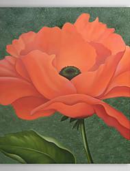 Hand geschilderd olieverfschilderij Bloemen 1305-FL0123
