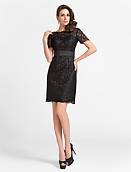 Cocktail Party Dress - Black Plus Sizes Sheath/Column Jewel Knee-length Lace/Satin
