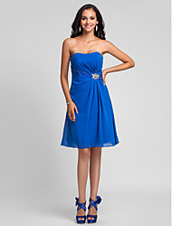 Knee-length Chiffon Bridesmaid Dress - Royal Blue Plus Sizes / Petite A-line / Princess Strapless