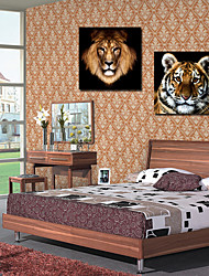 Stretched Canvas Art Animal Tiger and Lion Set of 2