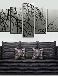 Canvas Art Botânico Manhã Árvore conjunto de 5