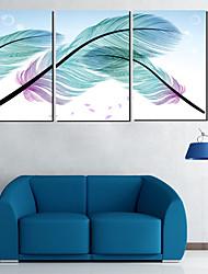 Reproduction transférée sur toile Art Still Life plumes Ensemble de 3