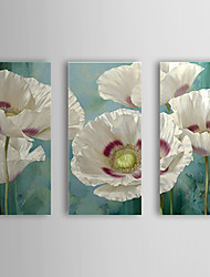 Hand Painted Oil Painting Floral with Stretched Frame Set of 3 1309C-FL0858