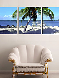Leinwand Kunst Landschaft Blue Sea und Coconut Palm 3er Set