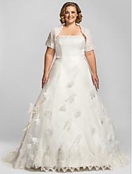 A-line Petite / Plus Sizes Wedding Dress-Ivory Chapel Train Strapless Organza
