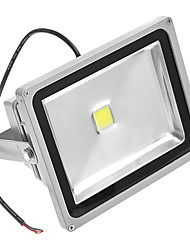 30W 6000K White Light Led Flood Light AC110/220V