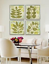Diferentes formas de hojas verdes Botánica Framed Canvas Print Set de 3