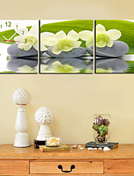 "12""-24""Country Style Flower Wall Clock In Canvas 3pcs"