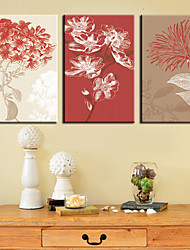 Stretched Canvas Art Floral Fresh Blush Set of 3