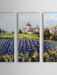 Hand Painted Oil Painting Landscape House by Field with Stretched Frame Set of 3 1311-LA1139