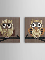 Stretched Canvas Art Animal Owl by Erin Clark Set of 2