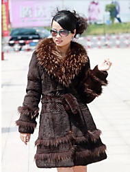 Long Sleeve Shawl Raccoon Fur And Rabbit Fur Party/Casual Coat(More Colors)