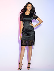 TS Couture® Cocktail Party / Holiday Dress - Short Plus Size / Petite Sheath / Column Jewel Knee-length Lace / Satin Chiffon with Lace