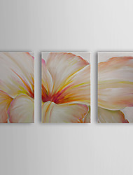 Hand Painted Oil Painting Floral Charming Petal with Stretched Frame Set of 3 1311-FL1061