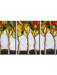Main peinture à l'huile peinte Arbre modeste botanique avec Set de cadre tendu de 3