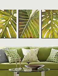 Stretched Canvas Print Art Botanical Green Leaf Set of 3