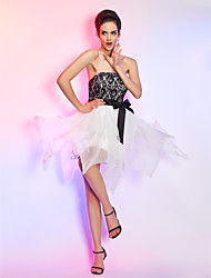 Cocktail Party / Homecoming / Holiday Dress - Ivory Plus Sizes / Petite A-line Strapless Short/Mini Chiffon / Lace