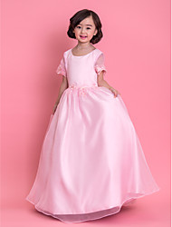 Formal Evening / Wedding Party / Vacation Dress - Blushing Pink A-line Jewel Ankle-length Organza
