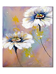 Hand Painted Oil Painting Floral White Flower with Stretched Frame