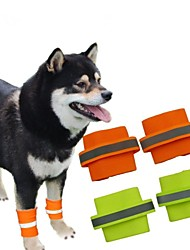 seguridad fluorescente pulsera perro para mascotas perros de 2 piezas