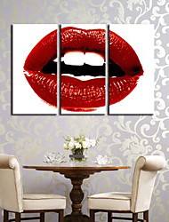 Canvas Art A Warm Red Lip Conjunto de 3