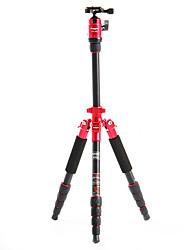 Fotopro X4i-E Recorrido al aire libre de aluminio-magnesio aleación telescópico Trípode para cámara réflex digital (rojo)