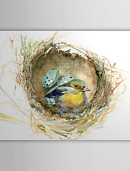 IARTS®Hand Painted Oil Painting Animal Bird's Nest with Birds And Eggs with Stretched Frame