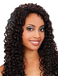 20inch Beautiful Curly High Temperature Synthetic Front Lace Wig Color Show #2  (6 Color available)