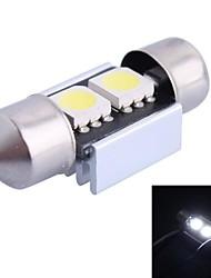 31mm 0,6 W 32LM 6000K 2x5050 SMD weiße LED für Auto-Lesen / Kfz-Kennzeichen / Türleuchte (DC12V, 1Stk)